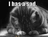 funny-pictures-sad-cat-blackandwhite.jpg