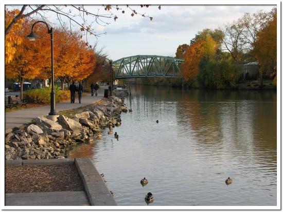 fall foliage 022.JPG