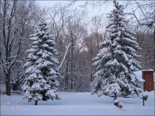 snow 002.JPG