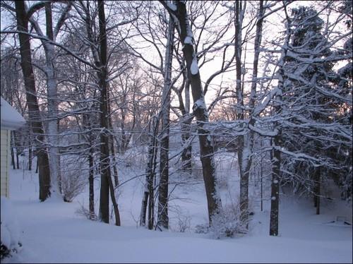 snow 011.JPG