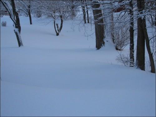 snow 014.JPG