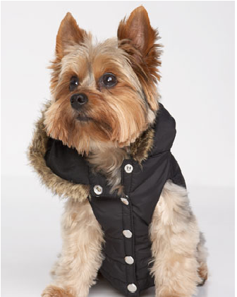 puffer vest 6.png